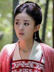 赵丽颖袁姗姗孙俪刘亦菲 女星古装长发美照大全[29P]