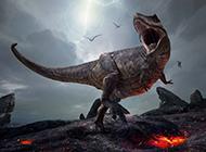 野生动物恐龙高清创意图片
