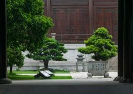 中国风庭院图片_13张