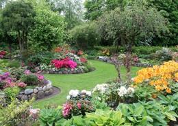漂亮的花园图片_10张