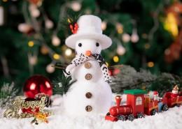 圣诞节小装饰品图片_10张