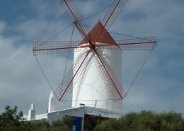 高大的荷兰风车图片_14张