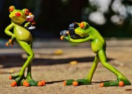 有趣的玩具青蛙图片_18张