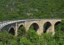 坚固的桥梁图片_12张