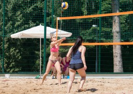 休闲沙滩排球图片_13张