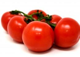 酸甜可口的新鲜番茄图片_9张