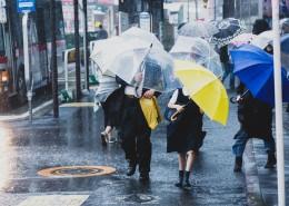 雨天街道打伞的人们图片_9张