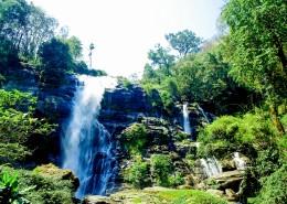 森林里的瀑布图片_10张