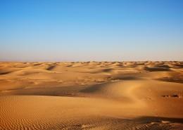 干旱的沙漠图片_12张