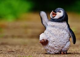 小小的企鹅玩具图片_10张