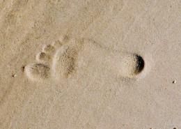 沙滩上的脚印图片_14张