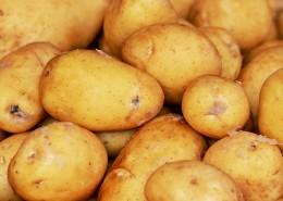 成堆的新鲜土豆图片_16张