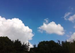 晴空白云图片_11张