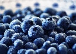 清香可口的蓝莓图片_13张
