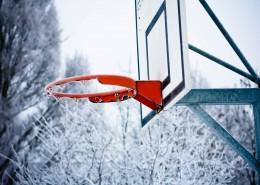 篮球架上的篮球框图片_13张