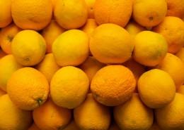 清爽的柠檬图片_11张