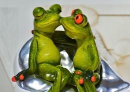 有趣的玩具青蛙图片_14张