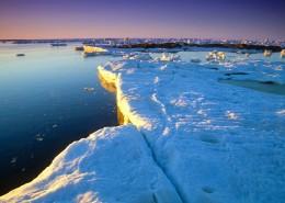 极地冰雪图片_13张