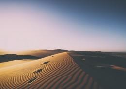 干旱的沙漠图片_14张