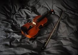 典雅的小提琴图片_12张