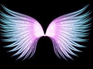 翅膀炫彩背景图片高清大图