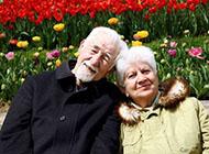 老年甜蜜夫妻意境图