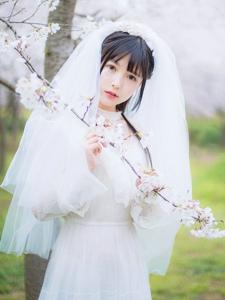 樱花树下的婚纱纯白懵懂迷人妹子
