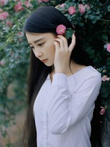 蔷薇花墙下的白衬衫美女寂静动人