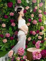 最美的孕妈照
