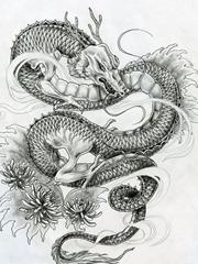 一张帅气的龙纹身图案手稿素材