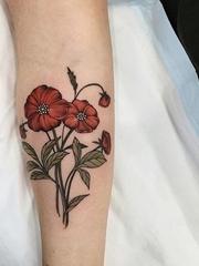 精致漂亮的新传统风格纹身图案来自索菲娅