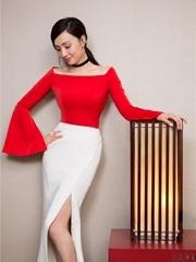 陶虹获封年度爱心人物 红裙礼亮相显好身材