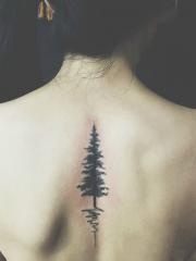 女生后背自然系小清新大树纹身