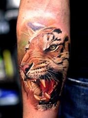 多种风格帅气的老虎纹身图案