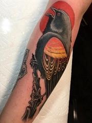 手臂上彩色的树枝上的红翼黑鸟纹身图片