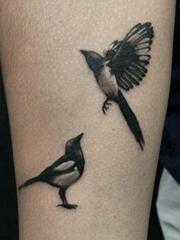 手前臂上的一对可爱的喜鹊纹身图片