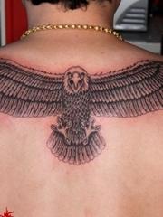 后背展翅大雄鹰纹身图