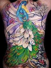 四张女性背部的凤凰beibufenghuang纹身图