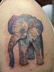 男性右手臂上大象纹身动物纹身图片