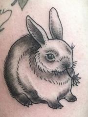 严格的彩色水墨素食主义纹身动物图案纹身