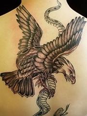 后颈下部老鹰扑蛇纹身图案