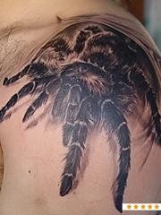 很吓人的右肩上黑色大蜘蛛图案