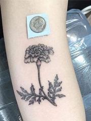 手臂上精致的黑灰色微型万寿菊纹身图片