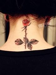 美女颈部一枝玫瑰纹身图
