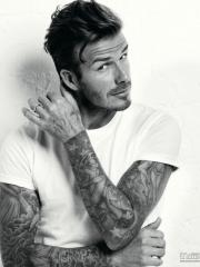阳光大男人明星贝克汉姆的花臂纹身