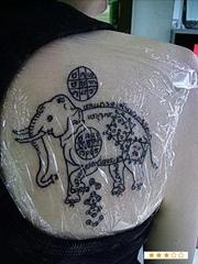 后背右侧肩胛处大象纹身作品图案