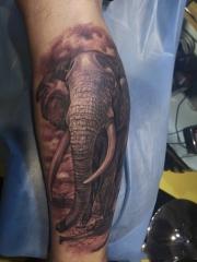 小腿写实大象素描纹身