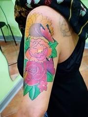 女性手臂上多款美丽的蝴蝶纹身图案