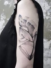 黑色的卡通动物和人物简易画纹身图案来自于纹身师比昂卡
