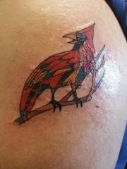 左手大臂上彩色鸟纹身图片